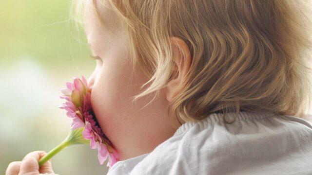 【保存版】花や植物が由来・外国人の男の子の名前38選