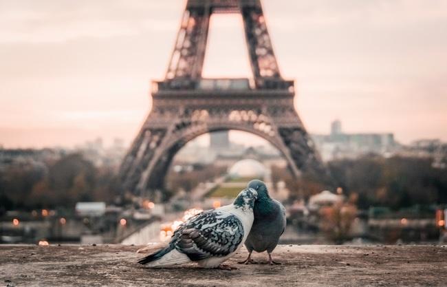 フランス パリ イギリス フランス人 イギリス人 ステレオタイプ