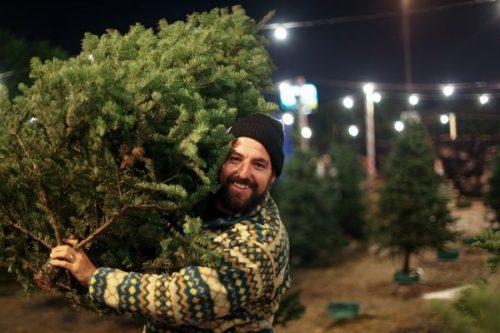 もみの木をかかえる男性