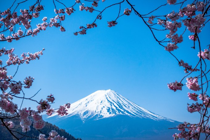 日本 イギリス人 富士山