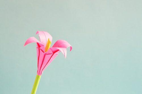 折り紙 花 Origami